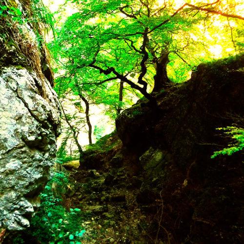 Descenso Barranco Lizebar, cerca de Iruña, Pamplona, uno de las experiencias de barranquismo más espectaculares de Euskal Herria. Pais Vasco, Euskadi, Navarra, Basque Country. Guías Profesionales de Barrancos