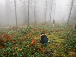 orientación-en-Urkiola-Turismo-activo-euskadi-Lurra-Adventure-Orientación-interpretatiava-25