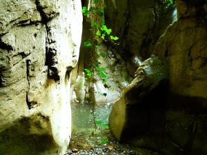 Barranco-Oudaybi-Barranquismo-Descenso-de-cañones-Canyoning-Iparralde-Kakueta-Holtzarte-Navarra-Guías-de-Barrancos-Canyon-Guides-11