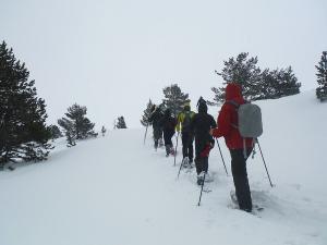 Raquetas-de-nieve-n-Belagua-Raquetas-de-nieve-en-Navarra-Elur-erraketak-Belagoan-Elur-erraketak-Nafarroan-Snowshoeing-in-Belagua-Snowshoeing-in-Navarra-Guías-de-montaña-Mendi-gidariak-13