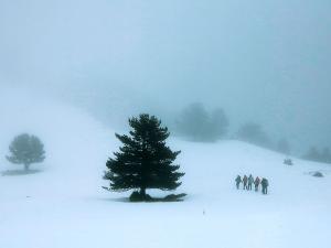 Raquetas-de-nieve-n-Belagua-Raquetas-de-nieve-en-Navarra-Elur-erraketak-Belagoan-Elur-erraketak-Nafarroan-Snowshoeing-in-Belagua-Snowshoeing-in-Navarra-Guías-de-montaña-Mendi-gidariak-15