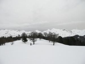 Raquetas-de-nieve-n-Belagua-Raquetas-de-nieve-en-Navarra-Elur-erraketak-Belagoan-Elur-erraketak-Nafarroan-Snowshoeing-in-Belagua-Snowshoeing-in-Navarra-Guías-de-montaña-Mendi-gidariak-19