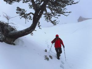 Raquetas-de-nieve-n-Belagua-Raquetas-de-nieve-en-Navarra-Elur-erraketak-Belagoan-Elur-erraketak-Nafarroan-Snowshoeing-in-Belagua-Snowshoeing-in-Navarra-Guías-de-montaña-Mendi-gidariak-web-11b