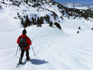 Raquetas-de-nieve-n-Belagua-Raquetas-de-nieve-en-Navarra-Elur-erraketak-Belagoan-Elur-erraketak-Nafarroan-Snowshoeing-in-Belagua-Snowshoeing-in-Navarra-Guías-de-montaña-Mendi-gidariak-web-12b