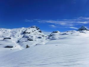 Raquetas-de-nieve-n-Belagua-Raquetas-de-nieve-en-Navarra-Elur-erraketak-Belagoan-Elur-erraketak-Nafarroan-Snowshoeing-in-Belagua-Snowshoeing-in-Navarra-Guías-de-montaña-Mendi-gidariak-web-14b