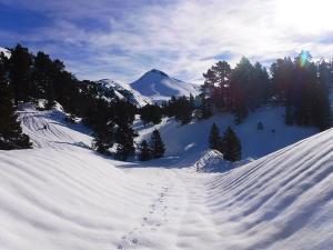 Raquetas-de-nieve-n-Belagua-Raquetas-de-nieve-en-Navarra-Elur-erraketak-Belagoan-Elur-erraketak-Nafarroan-Snowshoeing-in-Belagua-Snowshoeing-in-Navarra-Guías-de-montaña-Mendi-gidariak-web-16b