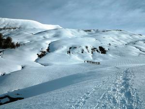 Raquetas-de-nieve-n-Belagua-Raquetas-de-nieve-en-Navarra-Elur-erraketak-Belagoan-Elur-erraketak-Nafarroan-Snowshoeing-in-Belagua-Snowshoeing-in-Navarra-Guías-de-montaña-Mendi-gidariak-web-1b