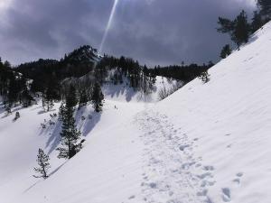 Raquetas-de-nieve-n-Belagua-Raquetas-de-nieve-en-Navarra-Elur-erraketak-Belagoan-Elur-erraketak-Nafarroan-Snowshoeing-in-Belagua-Snowshoeing-in-Navarra-Guías-de-montaña-Mendi-gidariak-web-4b