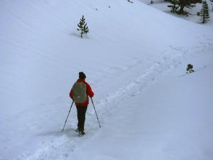 Raquetas-de-nieve-n-Belagua-Raquetas-de-nieve-en-Navarra-Elur-erraketak-Belagoan-Elur-erraketak-Nafarroan-Snowshoeing-in-Belagua-Snowshoeing-in-Navarra-Guías-de-montaña-Mendi-gidariak-web-6b