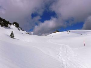 Raquetas-de-nieve-n-Belagua-Raquetas-de-nieve-en-Navarra-Elur-erraketak-Belagoan-Elur-erraketak-Nafarroan-Snowshoeing-in-Belagua-Snowshoeing-in-Navarra-Guías-de-montaña-Mendi-gidariak-web-8b