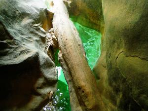 Descenso-barranco-Vero-Barranquismo-Sierra-de-Guara-Guías-de-Barrancos-Canyoning-Canyon-Guides-Mendi-eta-arroila-gidariak-Arroila-jeitsiera-11