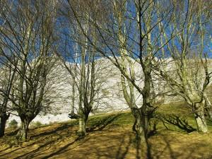 Ascension-Alluitz-deporte-aventura-parque-natural-urkiola-turismo-activo-pais-vasco-euskadi-basque-country-trekking-1