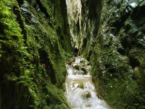 Barranquismo-Arroila-Jeitsiera-Canyoning-Nivel3-Pirineos-Pirinioak-Pyrenees-CanyonGuides-ArroilaGidariak-GuiasBarranquismo-28