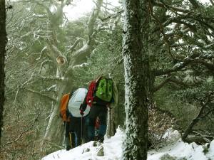 Raquetas-de-nieve-Elur-erraketak-Snowshoeing-Pais-Vasco-Euskadi-Navarra-Pirineos-Basque-Country-aventura-5