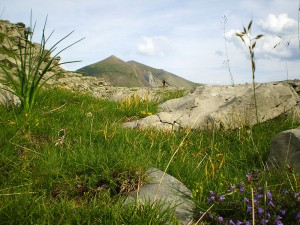 Senderismo-trekking-euskadi-navarra-deporte-aventura-galeria-9