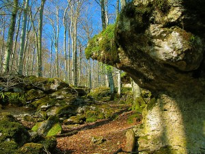 Urbasa-Turismo-Activo-Navarra-Senderismo-Aventura-Naturaleza-Travesia-4